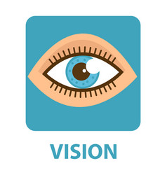 Sense of vision flat style icon eye isolated on vector