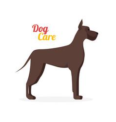 cartoon dog care vector image