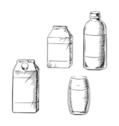 Milk bottle glass and cartons sketch vector image vector image