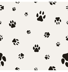 Paw Prints background vector image vector image