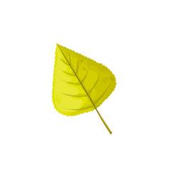 Autumn leaf tree foliage fall green leaves icon vector