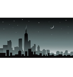 Chicago at Night vector image