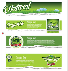 ecology organic nature green banner collection vector image