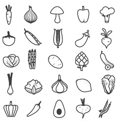 Fresh vegetables icons set vector