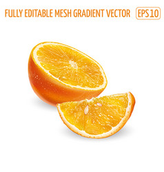 Half orange with slice on a white background vector