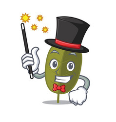 Magician bay leaf mascot cartoon vector