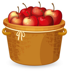 Red apple in basket vector