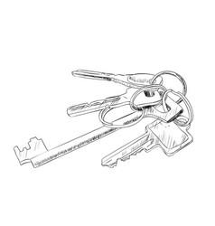 sketch of keys vector image