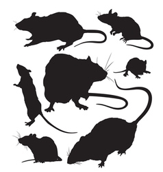 rat silhouette vector image vector image