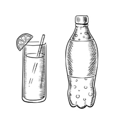 Bottle of soda with cocktail vector image