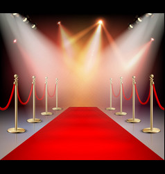 red carpet in illumination composition vector image