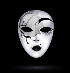 Black-white mask with veil vector