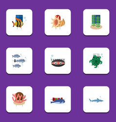 Flat icon nature set of seashell tuna seafood vector