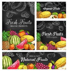 Fresh fruits sketch banners natural food vector