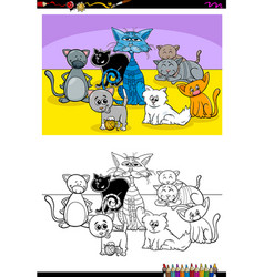 funny cats animal characters group color book vector image