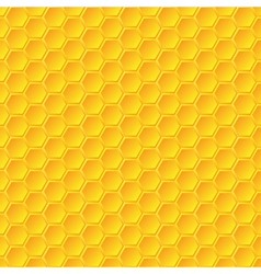 Honeycomb background vector image