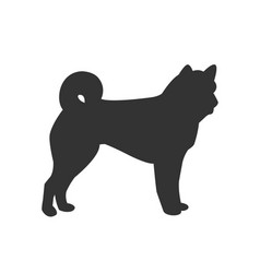 icon of dog isolated on white background vector image