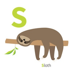 Letter s sloth english abc with animals zoo vector
