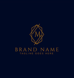 Luxury logotype premium letter m logo vector