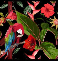tropical birds parrot exotic jungle plants vector image