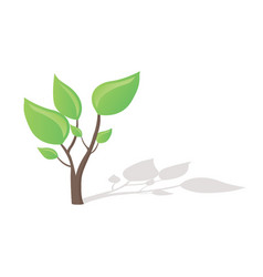 small tree growing vector image vector image