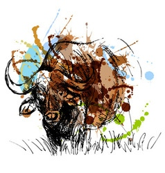 Colored hand sketch African buffalo vector image vector image