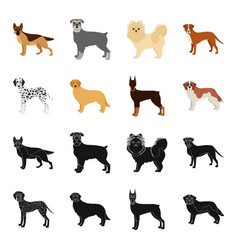 Dog breeds blackcartoon icons in set collection vector