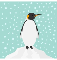 King penguin emperor aptenodytes patagonicus on vector