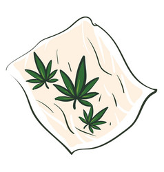 Marijuana leaves on a rolling paper on white vector
