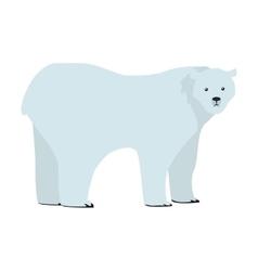 Polar Bear in Flat Design vector
