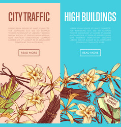Vanilla spice advertising flyers set vector