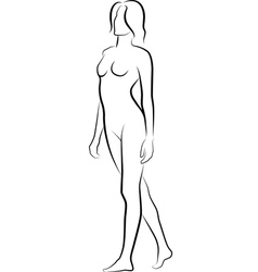 nude19 vector image vector image