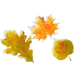 autumn abstract leaves vector image vector image