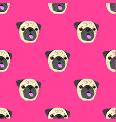 seamless pattern with face of pug dog on pink vector image