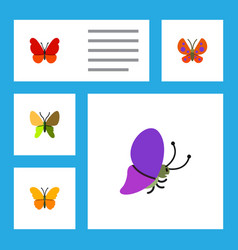 Flat butterfly set of monarch summer insect vector