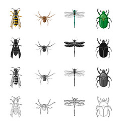 Isolated object of insect and fly logo set of vector