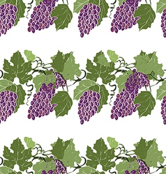 Seamless pattern grapes vector image
