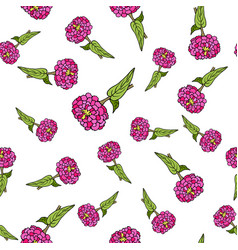 seamless pattern with zinnia vector image
