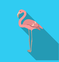 flamingo icon in flate style isolated on white vector image