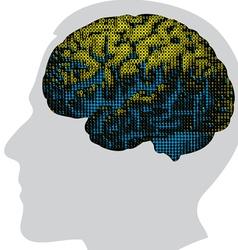 digital brain in color vector image