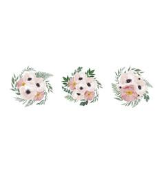 floral bouquet design anemone eucalyptus vector image