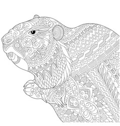 groundhog adult coloring page vector image