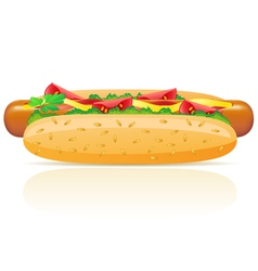 Hotdog isolated on white background vector