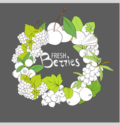 Outline berries frame vector