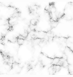 White marble texture background vector