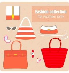 Womens fashion collection of bags and accessories vector image