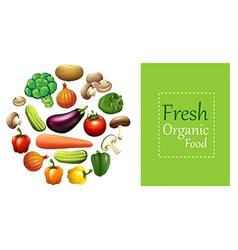 Mixed vegetables and sign vector image