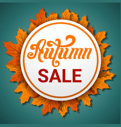 autumn final sale concept banner cartoon style vector image