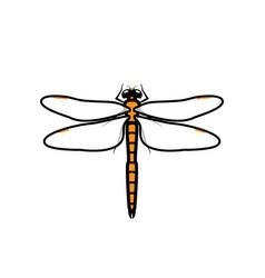 Dragonfly logo symbol icon sign orange color vector