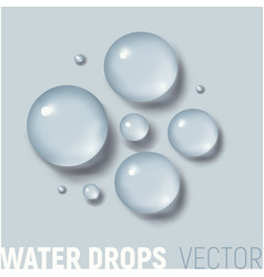 drops of water vector image